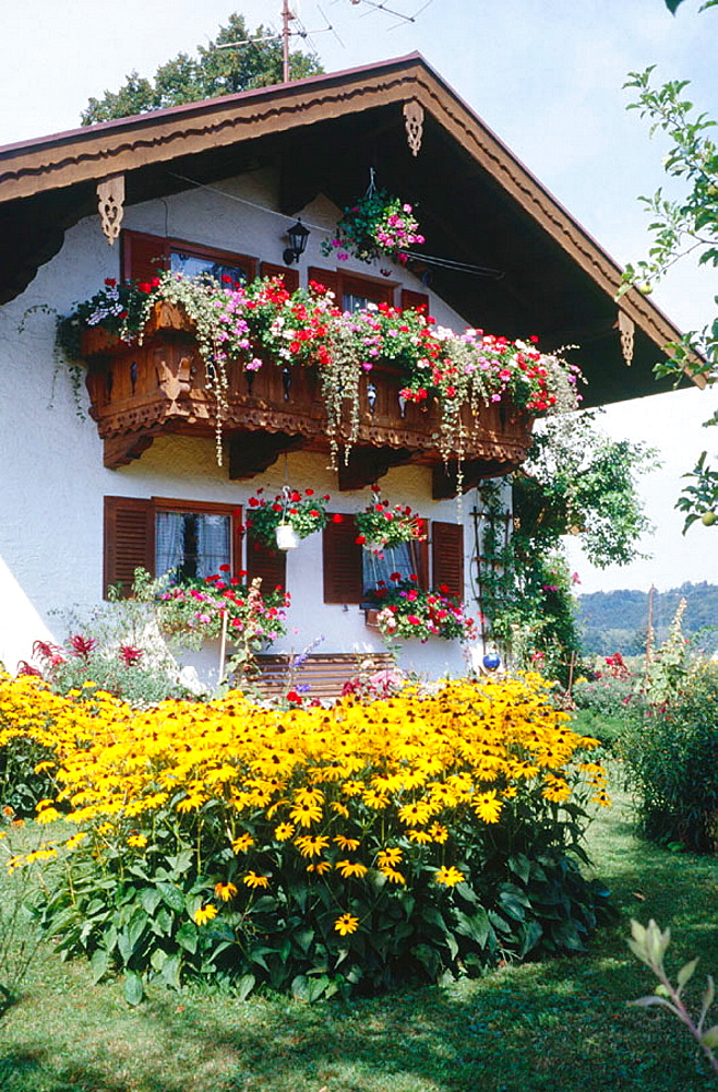 Bavarian house in Grassau, Bavaria, Germany close to the famous Chiemsee area with traditional flower display typical for many bed and breakfeast places as well as for private homes