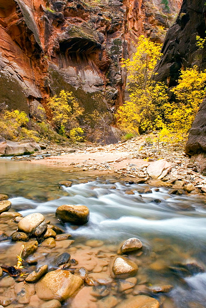 Zion Canyon Narrows, Zion National Park, Utah, USA