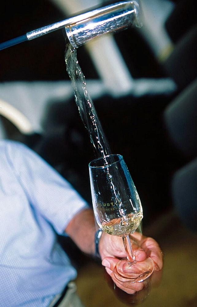 Lustau sherry, Jerez de la Frontera, Cadiz province, Spain