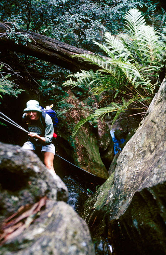Female on the first abseil in Starlight Canyon, above Valley, Blue Mountains National Park, New South Wales, Australia.