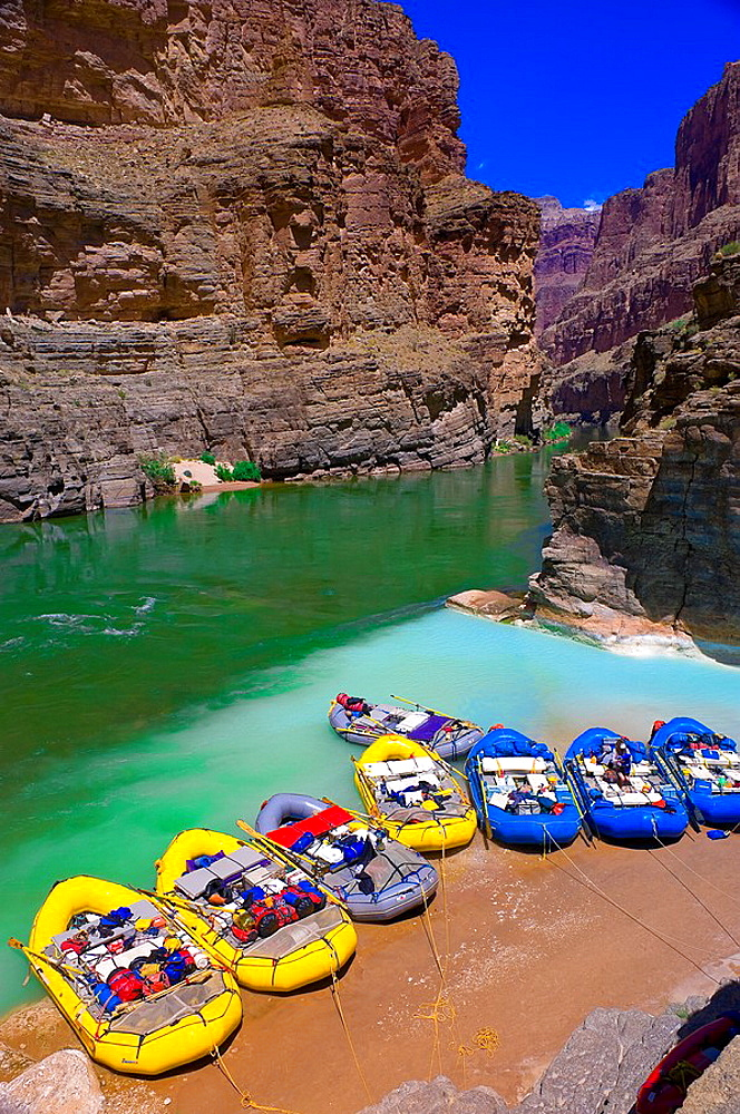 Confluence of the Colorado River and Havasu Creek, Whitewater rafting trip oar trip on the Colorado River in Grand Canyon, Grand Canyon National Park, Arizona USA