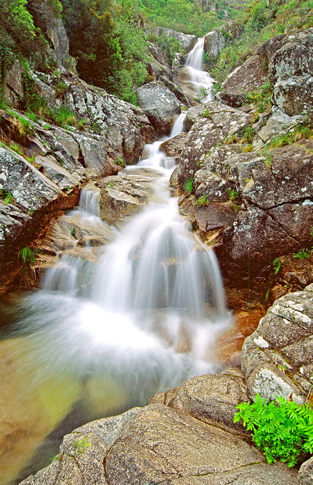 Baixa Limia-Serra do Xures Natural Park, Orense province, Galicia, Spain
