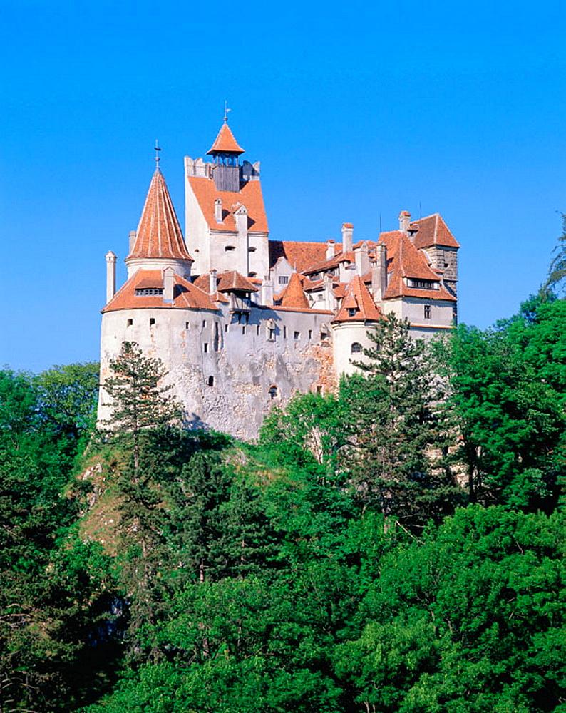 Bran castle (Dracula's Castle), Bran, Romania - 817-18088