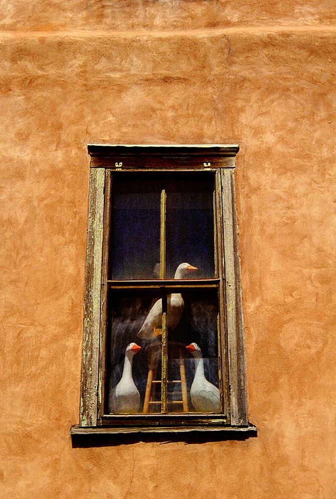 Trio of geese statues gazing from the window of an adobe building in Santa Fe, New Mexico, USA