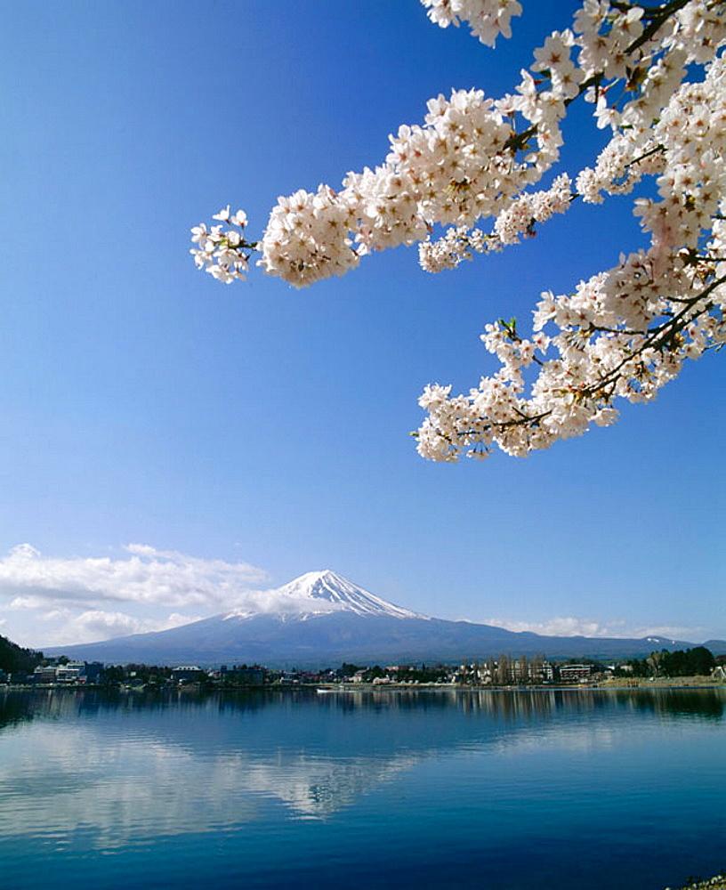 Lake Kawaguchi in Fuji Go-Ko, Fuji Mountain in the background, Japan
