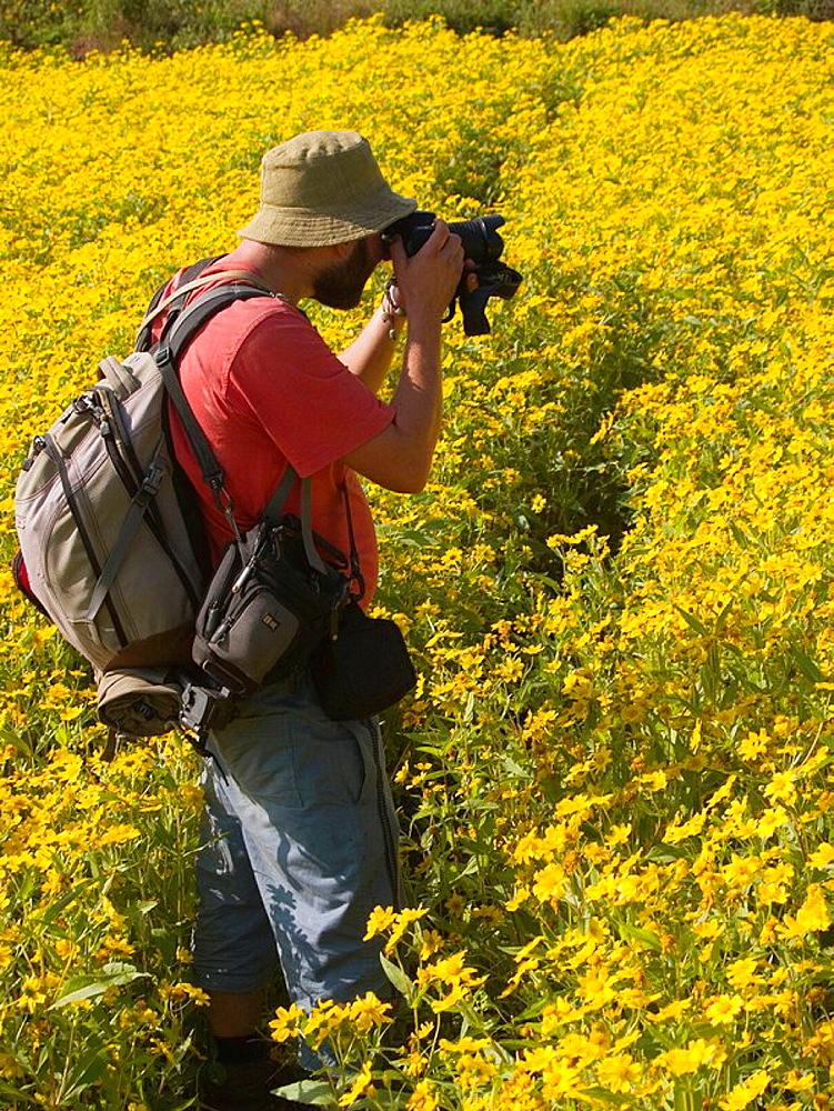 Photographer in flower fields in Myanmar