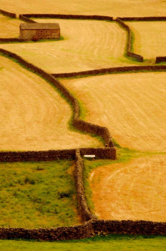 Pattern in the landscape near Gunnerside in Swaledale, Yorkshire, England, UK