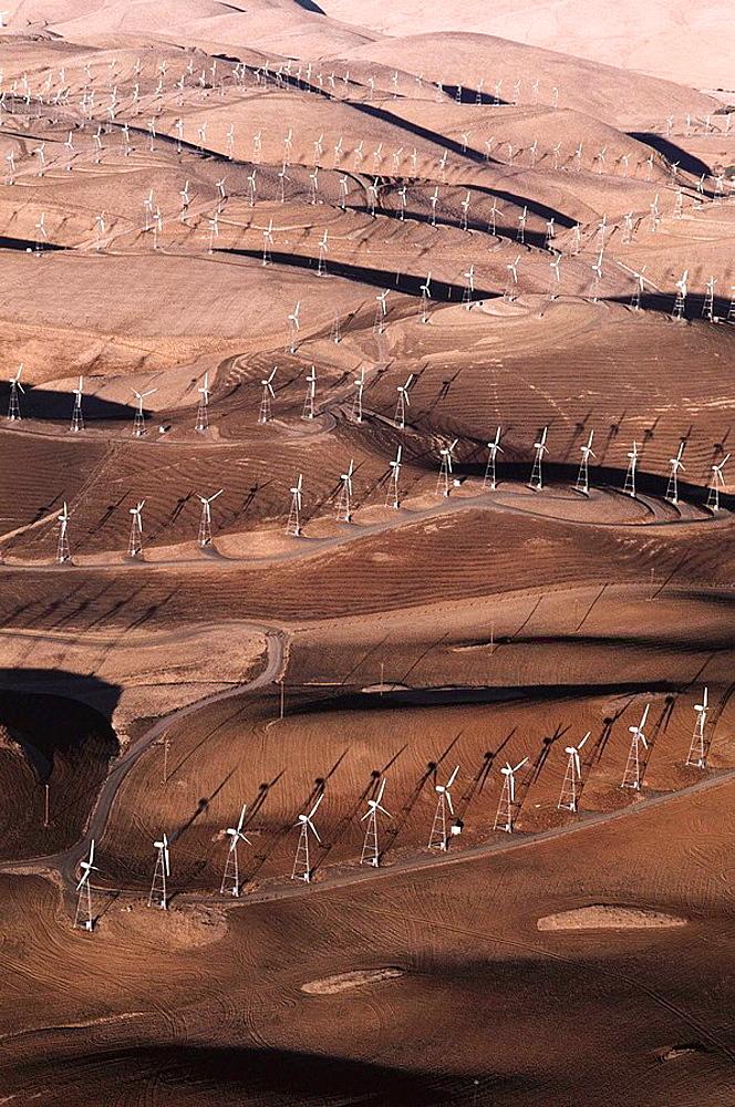 Windfarm, Livermore, California, USA - 817-215519