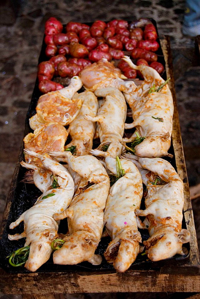 Peru, the Sacred valley, the village of Pisac, guinea pig (cuy in Spanish) and potatos ready for roasting, cuy is an Andean dish that is considered an Inca delicacy