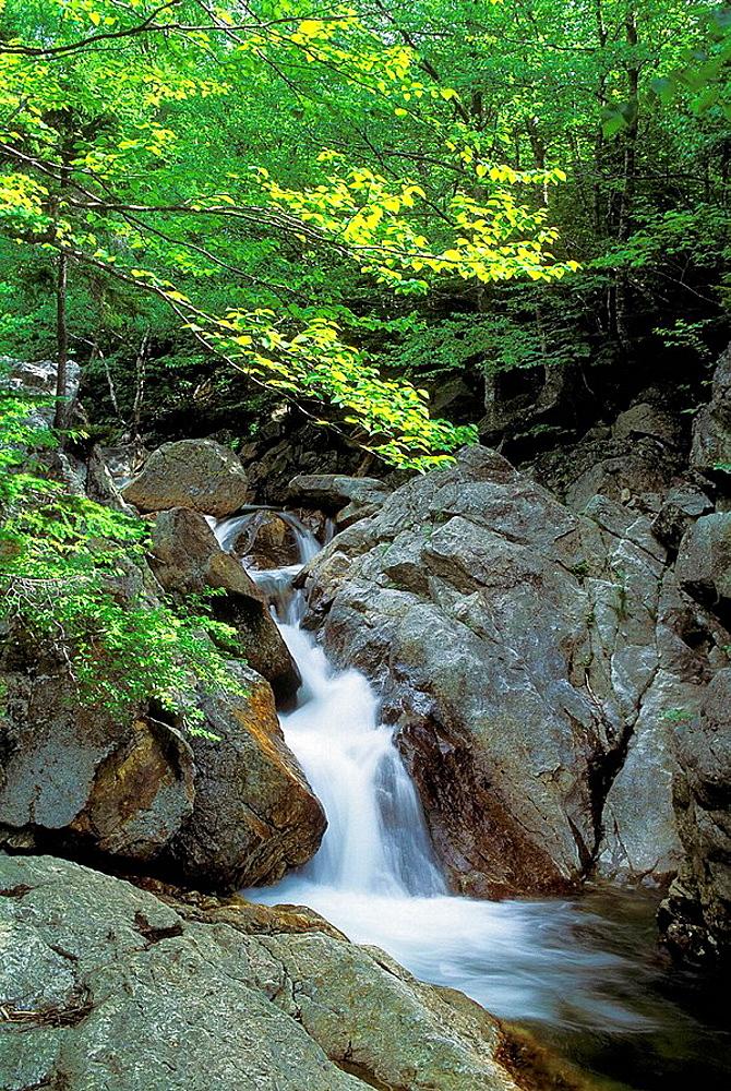 Waterfalls, Glen Ellis Falls, Pinkham Notch, White Mountain National Forest, New Hampshire, USA