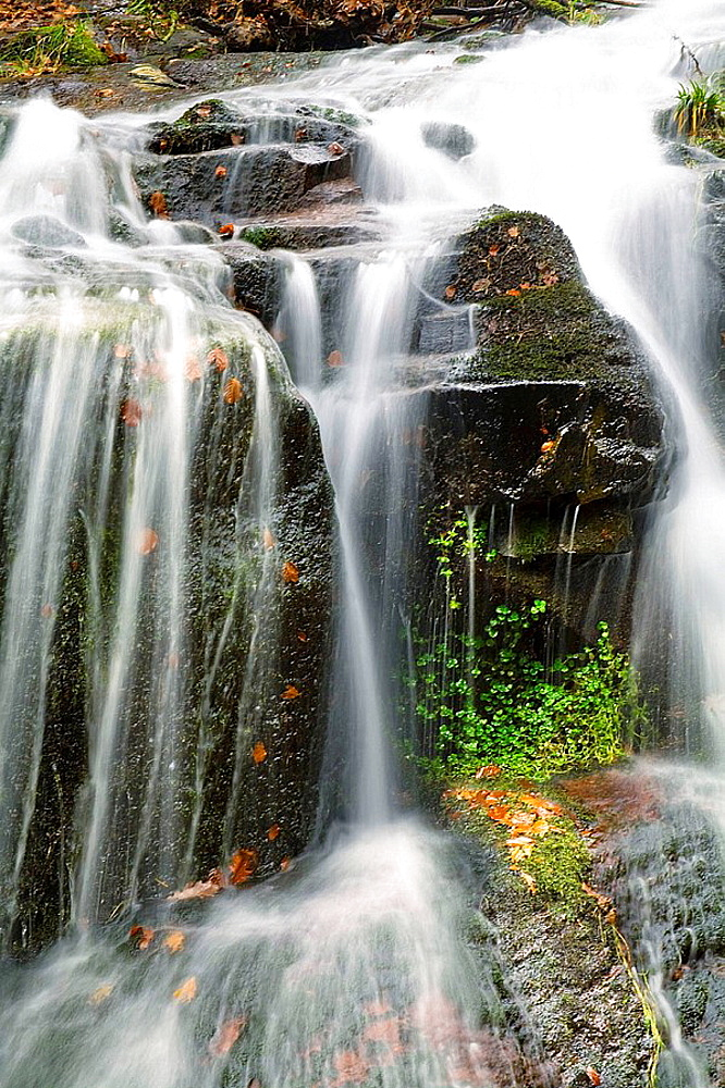 Detail of waterfall, Val la Harina pool, Cabuerniga Valley, Cantabria, Spain, Europe