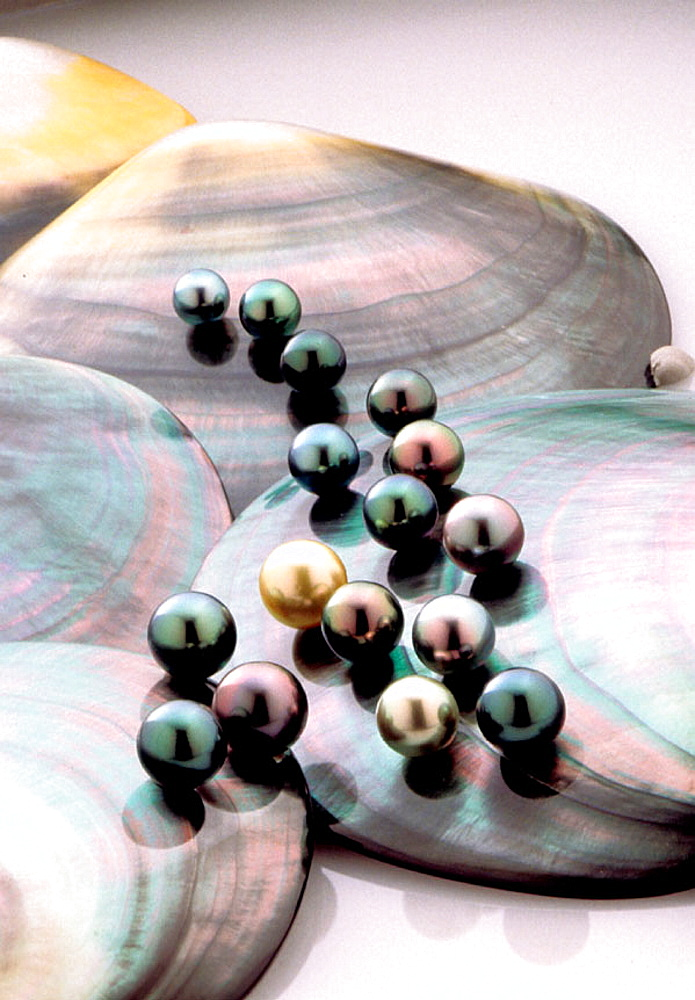 Black pearls of Mr, Robert Wan's private collection, French Polynesia - 817-24959