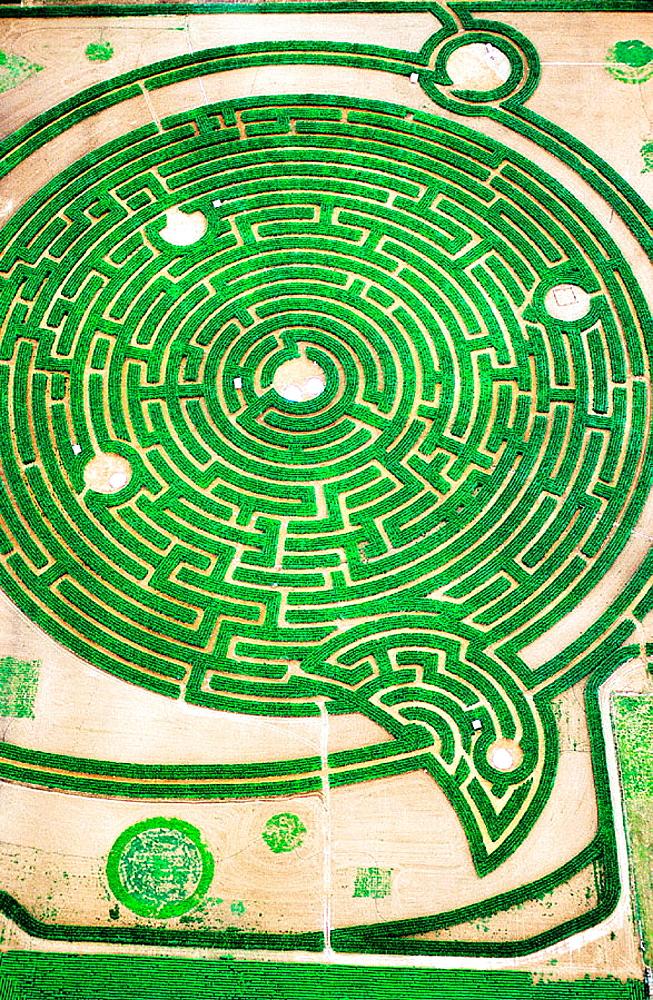 Aerial view of labyrinth at park, Rignac, Touraine, Val-de-Loire, France - 817-25123