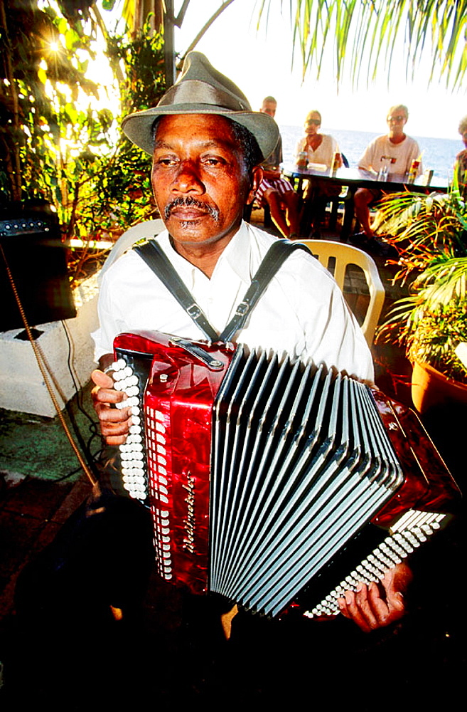 Musician playing accordion at Saturday evening market, Saint Paul, Reunion Island (France)