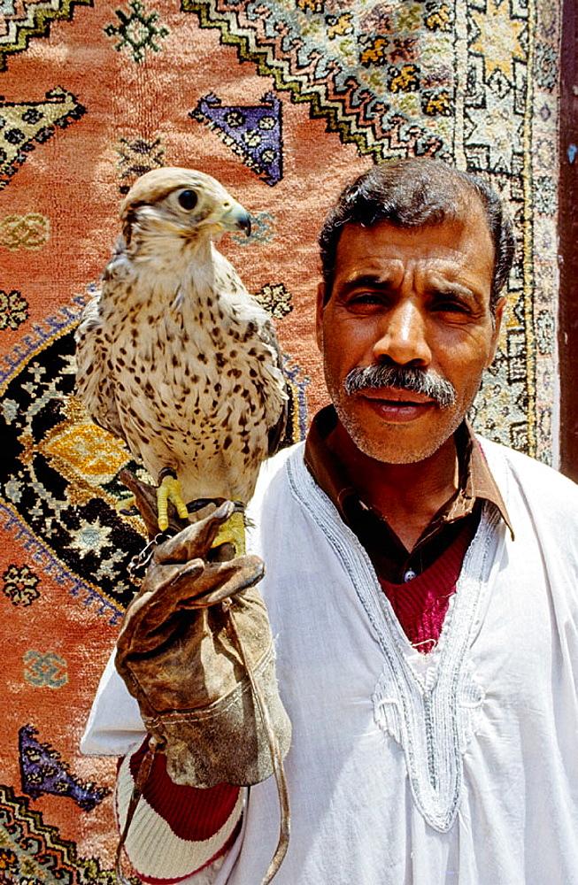 Falcon seller in the souks of the medina, Marrakech, Morocco