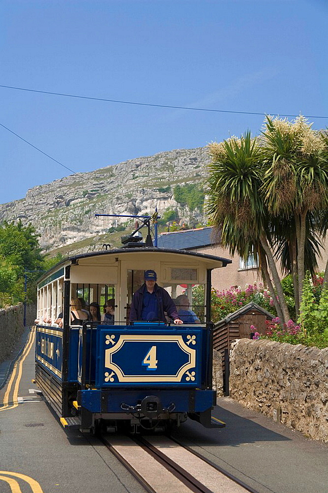 Wales, Llandudno, Conwy, tram, driver, tramway, Great Orme, transport, tourist, attraction, travel, holiday, vacation, . Wales, Llandudno, Conwy, tram, driver, tramway, Great Orme, transport, tourist, attraction, travel, holiday, vacation,