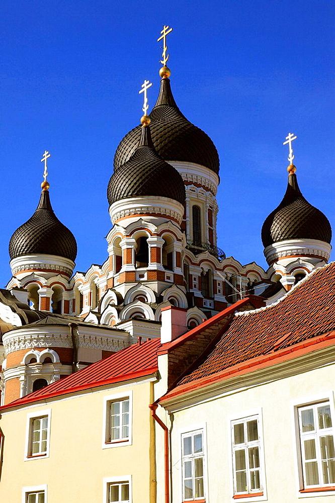 Onion Domes of Alexander Nevski Cathedral Tallinn, Estonia, Baltic States, Northeast Europe. - 817-30790