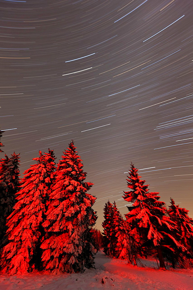 Star tracks in winter sky, Hohen Meissner National Park, North Hessen, Germany