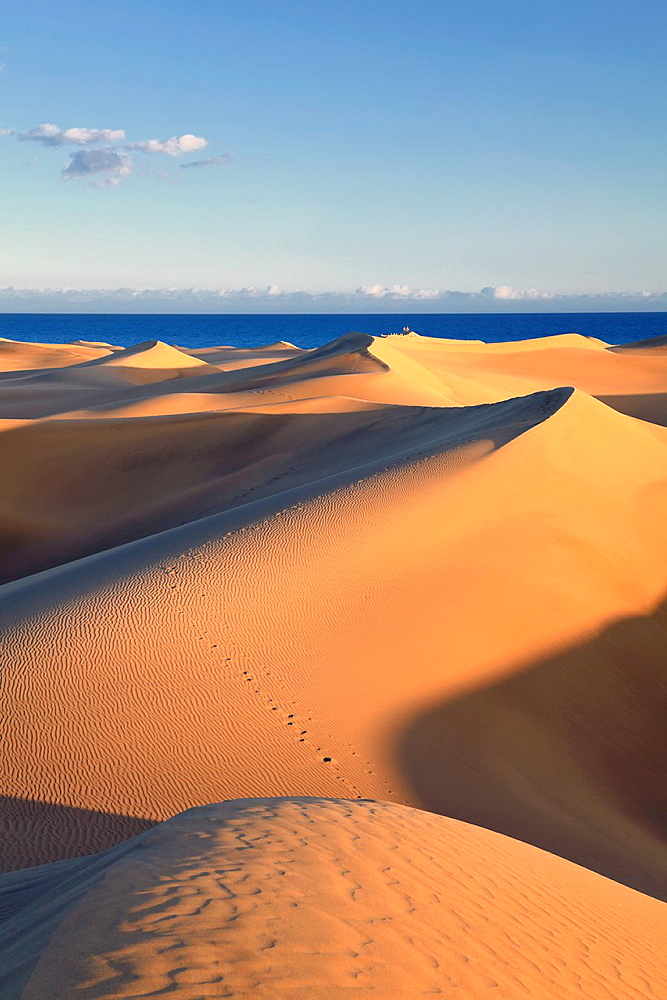 Canary Islands, Gran Canaria, Playa del Ingles, Maspalomas Sand Dunes National Park - 817-316083