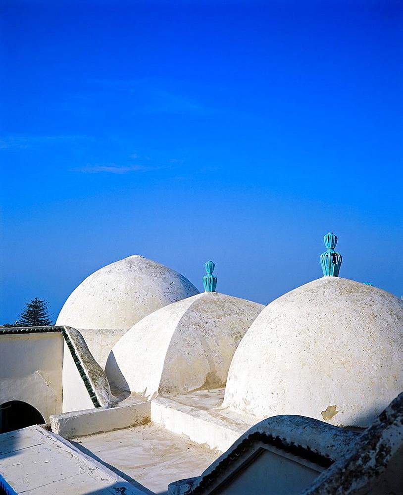 Cupolas of Zaouia mosque, Sidi Bou Said village, Tunisia