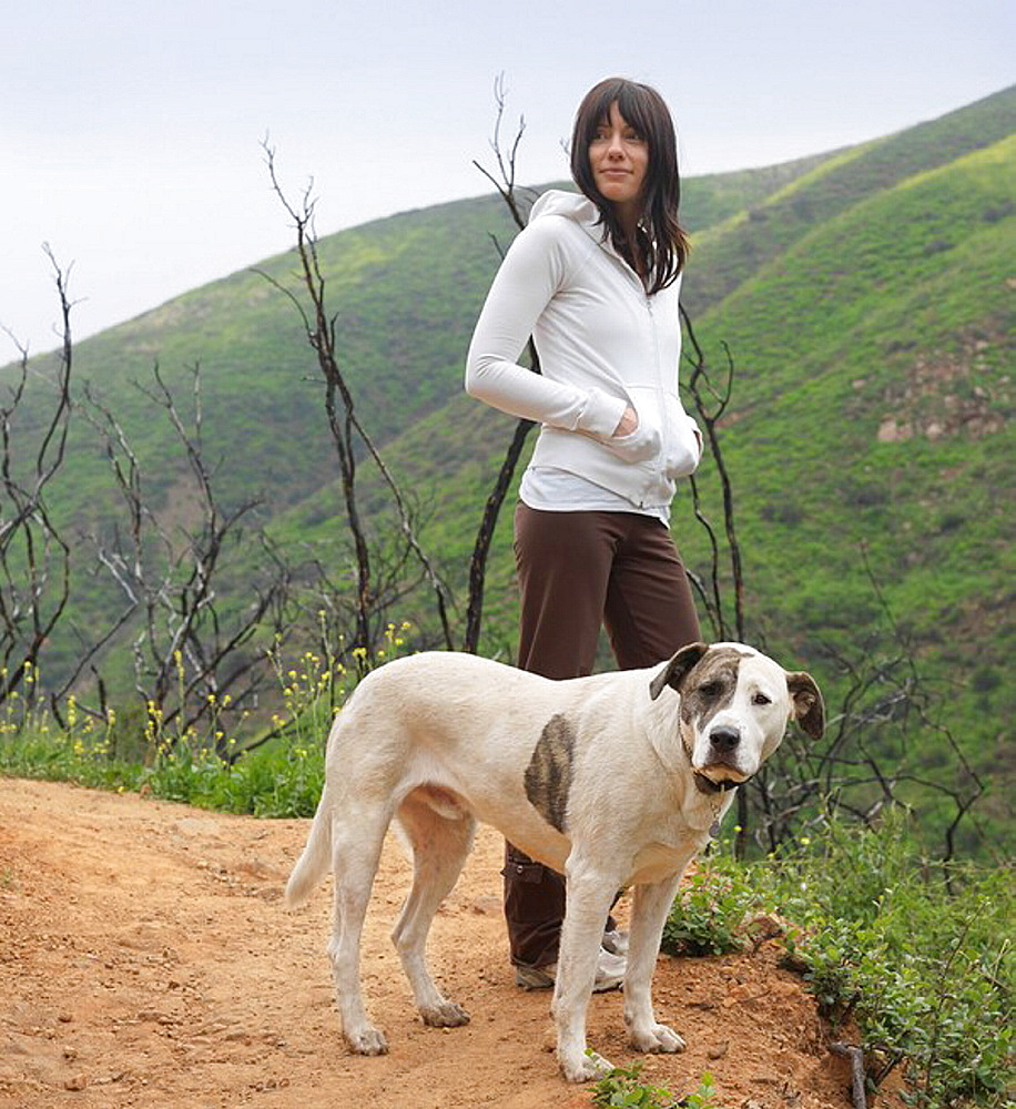 Dog and woman standing on path, Mixed breed dog Labrador and American Pit Bull Terrier