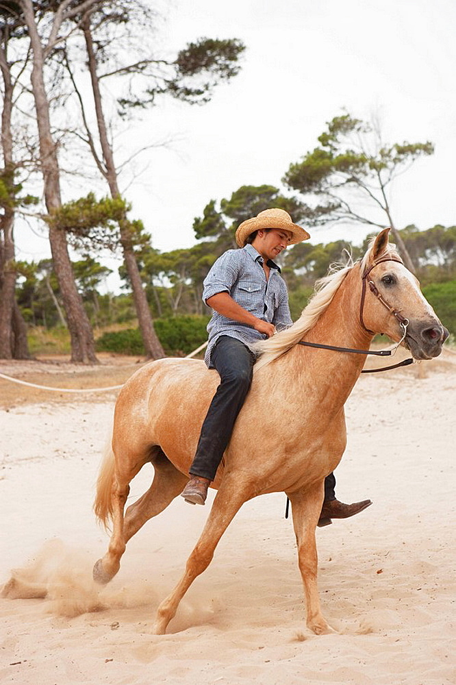 man sitting on horse