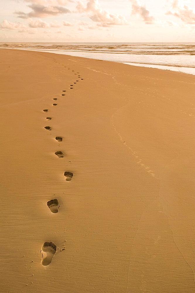 Footprints in the sand, Footprints in the sand