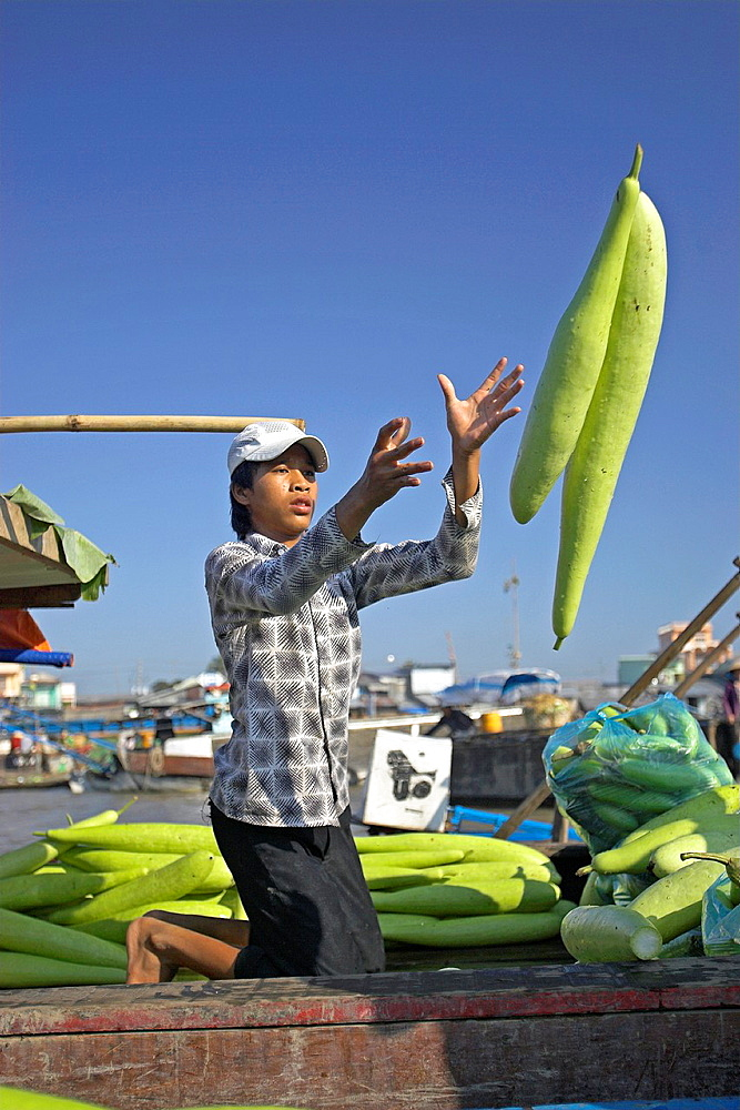 Young man throwing winter melons boat to boat Cai Ran floating market near Can Tho Vietnam