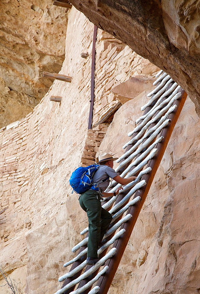 Cortez, Colorado - A park ranger climbs a ladder to enter the Balcony House cliff dwelling at Mesa Verde National Park The park features cliff dwellings of ancestral Puebloans that are nearly a thousand years old