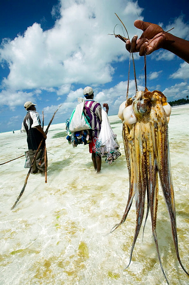 Jambiani beach, Fishermen, Zanzibar Island, Tanzania