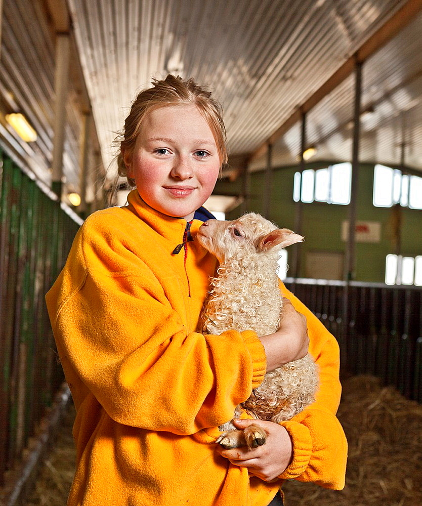 Young girl holding sheep, Kidafell Farm, Western Iceland