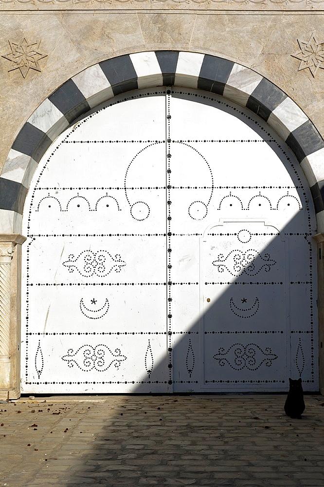 Africa, Tunisia, Sidi Bou Said, a cat front of traditional tunisian door