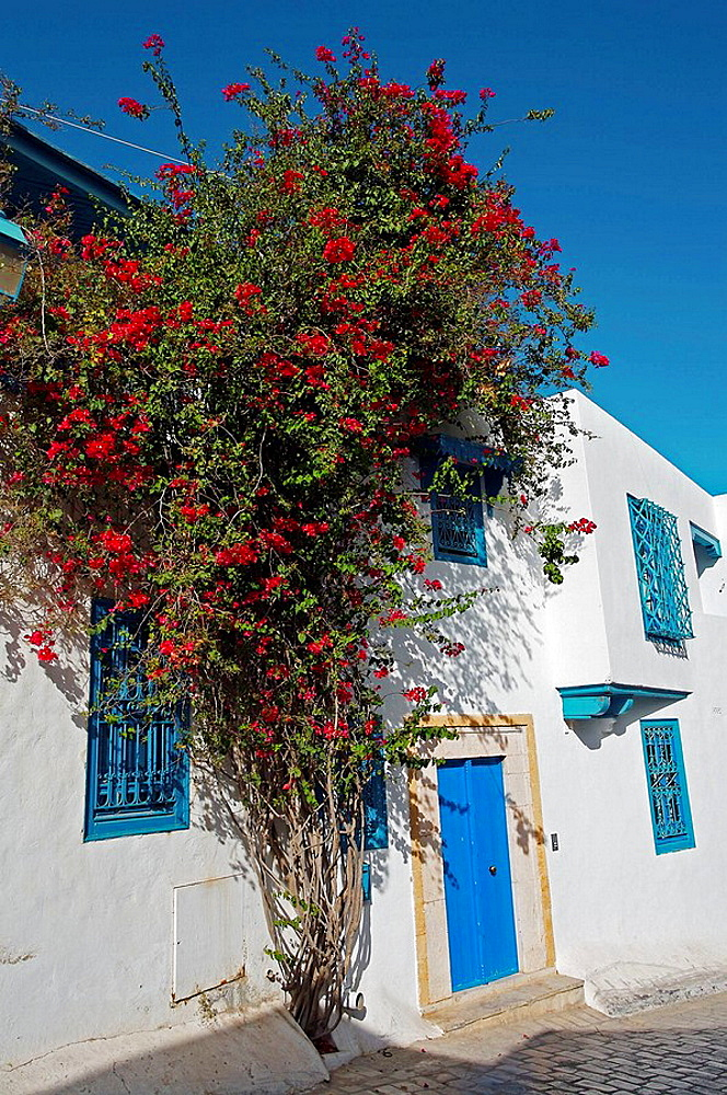 Sidi Bou Said near Tunis, Tunisia
