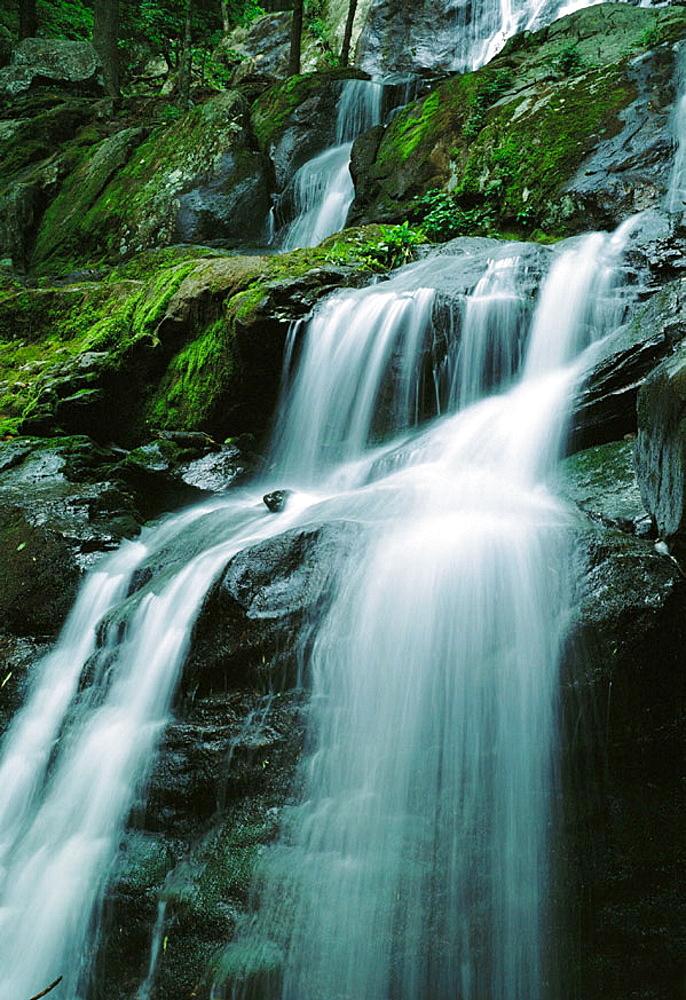 Whiteoak Falls, Shenandoah National Park, Virginia, USA