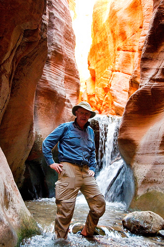 USA Utah, hike up the slot canyon known as Kanarra Creek, near Zion National Park, showing the red iron oxide rocks and the water stream erosion creating magnificent scenery  Model Released MR