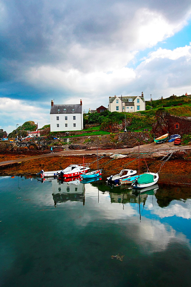 St Abbs, Summertime, Scotland, UK