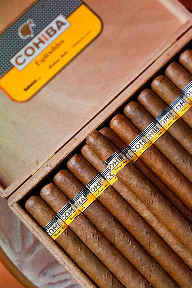 Cuba, Pinar del Rio Province, Pinar del Rio, Cuban Cigars at the Casa del Habano shop