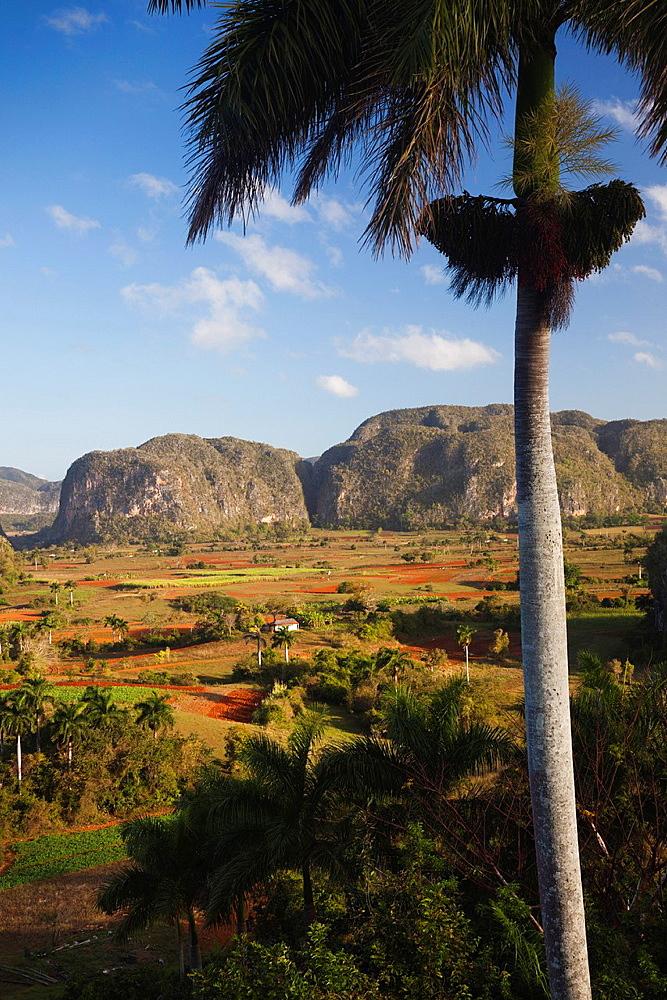 Cuba, Pinar del Rio Province, Vinales, Vinales Valley, elevated view, morning
