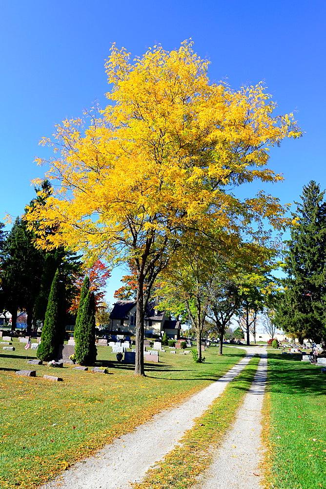 Cemetery in Autumn Fall MI Resting place Michigan