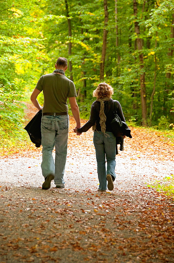 couple walking in autumn forest, close to Heidenheim, Heidenheim an der Brenz, Baden-Wurttemberg district, Swabia, Southern Germany