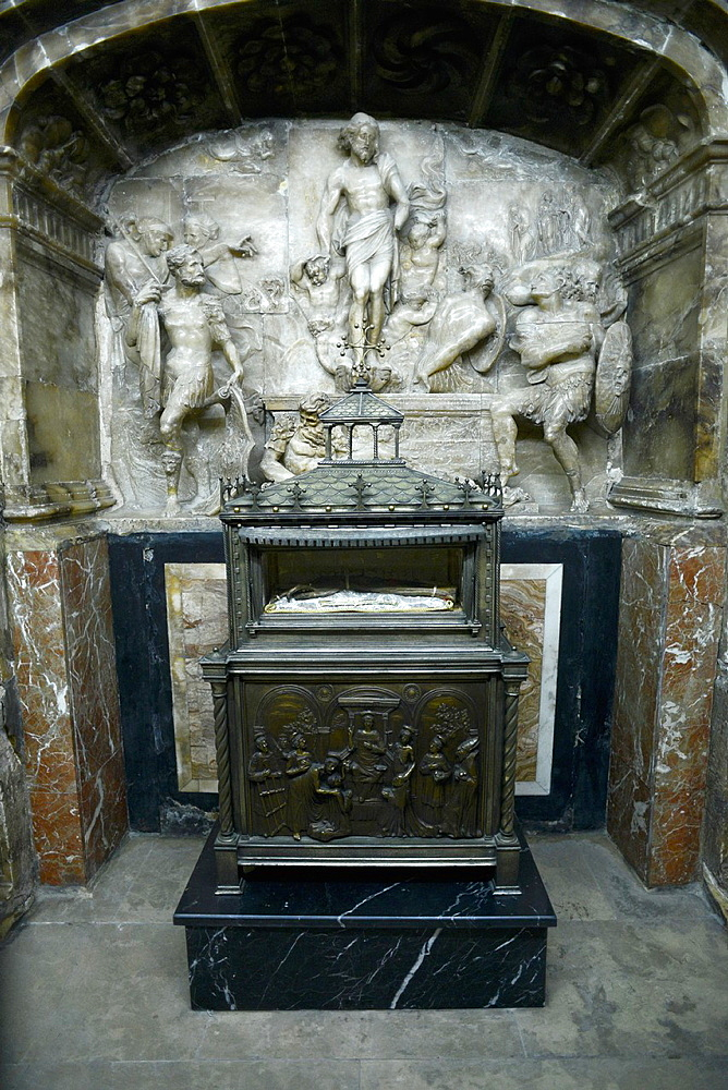 Incorrupt relic arm of San Vicente Martir, Valencia, Spain, Europe