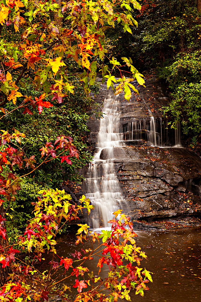 Colorful autumn foliage as leaves change colors at a waterfall along the Blue Ridge National Park near Asheville, North Carolina