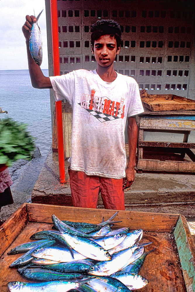 Boy at Fish market Grenada