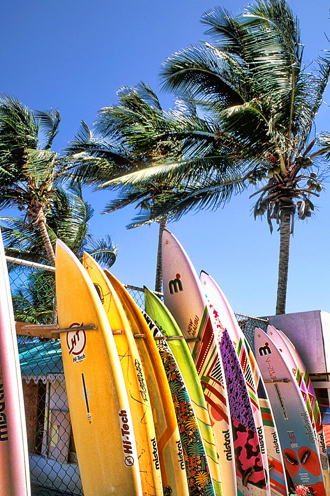 Surfboards Grand Cul De Sac St Barths