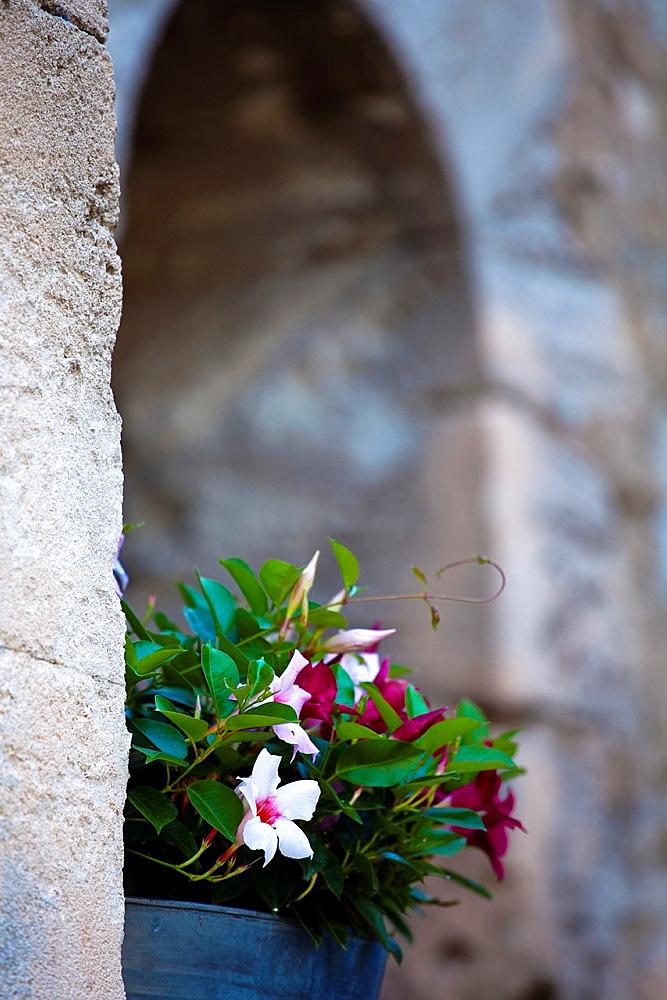 Lacoste village, Vaucluse, Provence, France