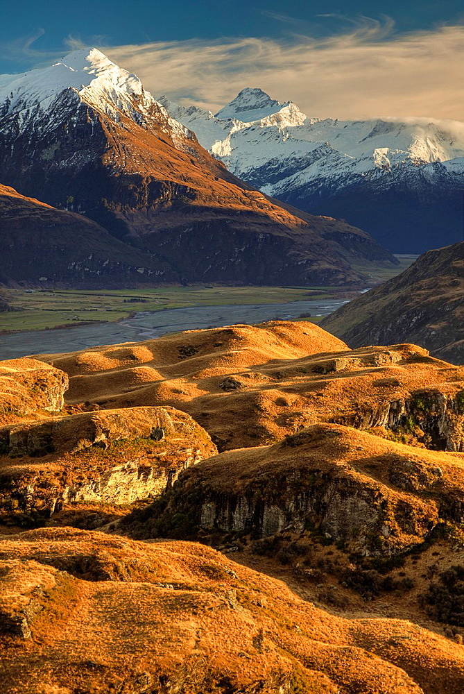 Mt Aspiring from tussock grass hills above Matukituki Valley, early moring light, near Wanaka, Otago