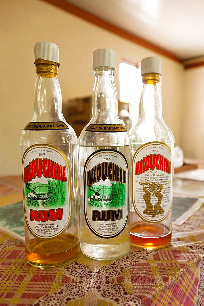 Dominica, Salisbury, Macoucherie Rum Distillery, bottles of Machoucherie Rum