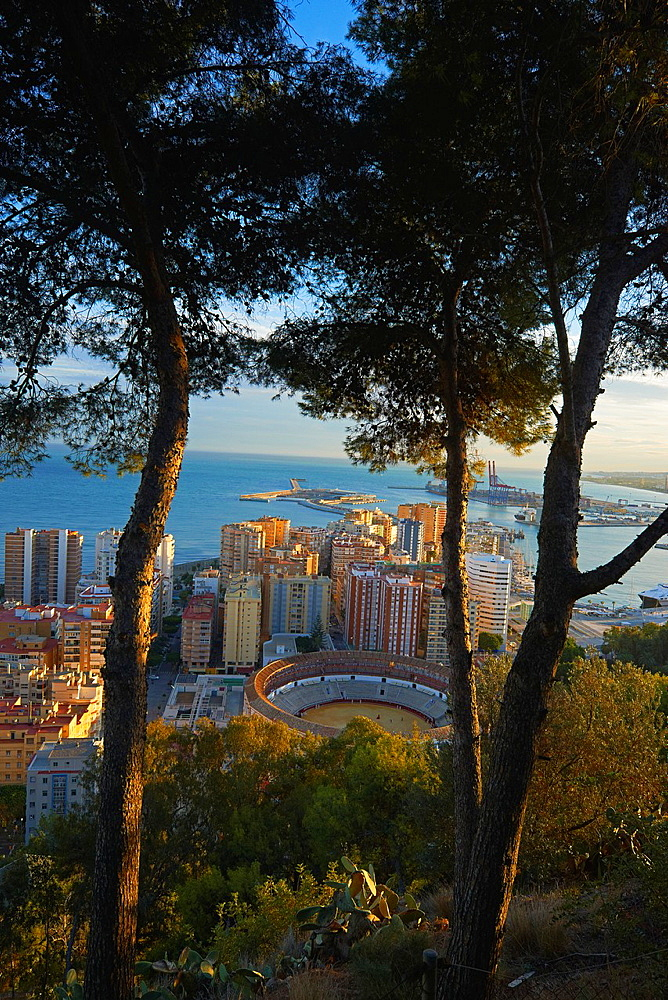 Malaga, Bullring and Port, View from Gibralfaro, Costa del Sol, Andalucia, Spain