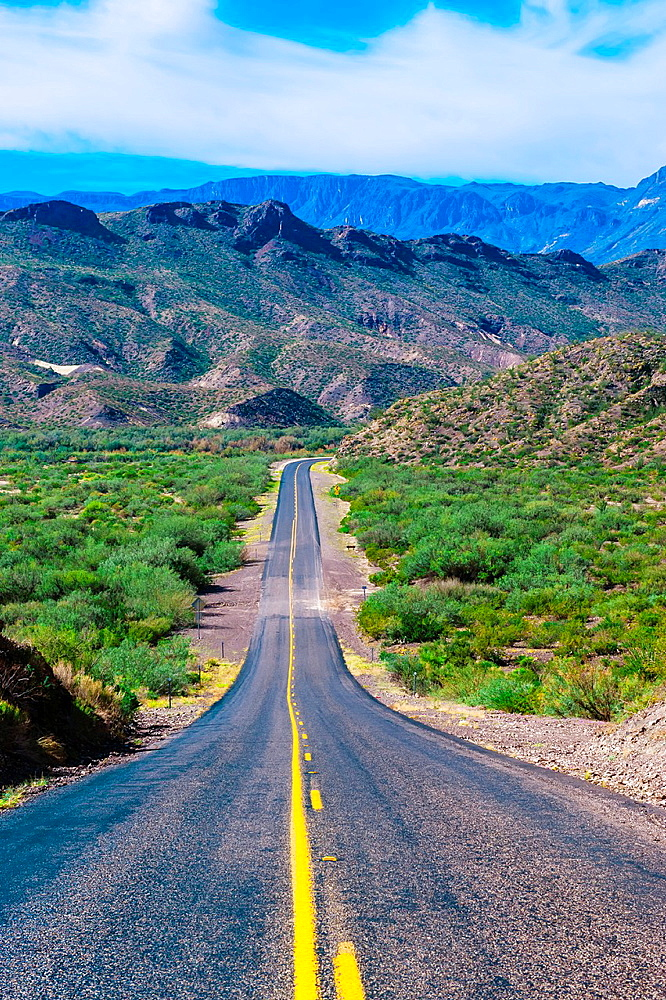 Camino del Rio, Big Bend Ranch State Park, Texas USA - 817-421127