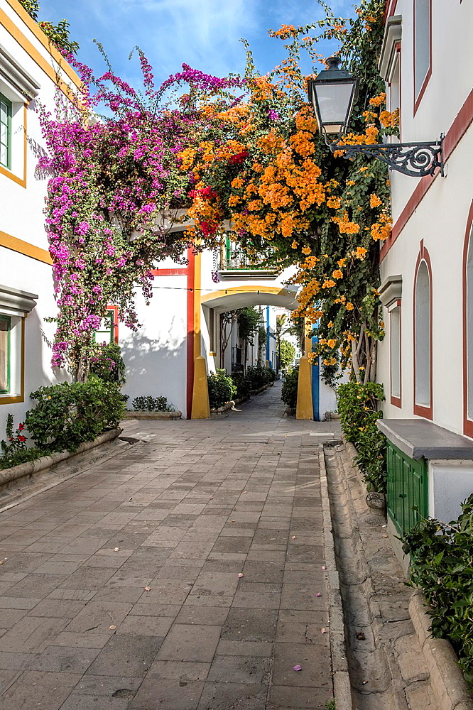 Traditional whitewashed houses decorated with bougainvillea flowers, Puerto de Mogan, Gran Canaria, Canary Islands, Spain